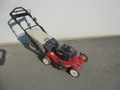Toro G1007